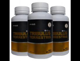 Tribulus_Terrestris_Super_Concentrado-kit3.png