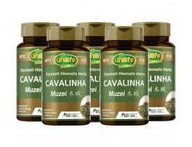 Cavalinha MuZei Vegana MTC 60 cápsulas de 500mg Kit com 5
