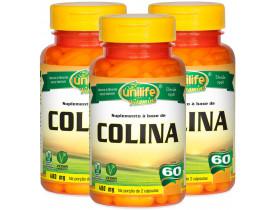 Colina Vitamina B8 60 cápsulas Kit com 3